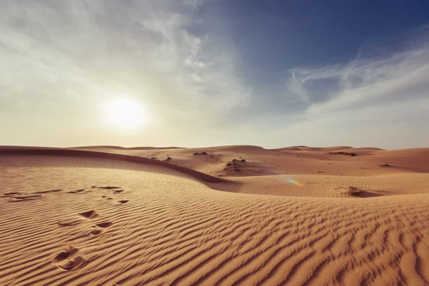 Rajd Dakar 2021. Jak radzą sobie Polacy?