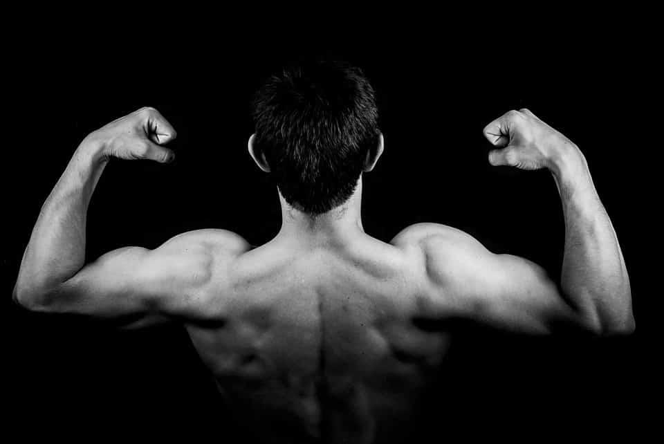 Które partie mięśni są najbardziej obciążone podczas rajdów i wyścigów?
